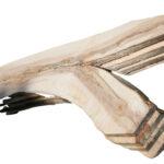 Ahorn#5 Baumscheibe Tischplatte