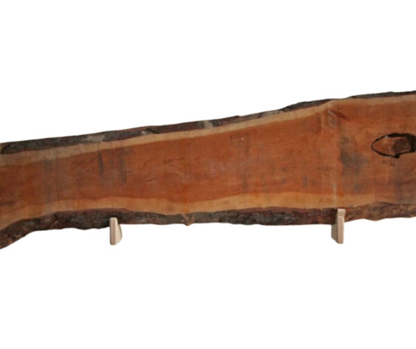 Baumscheibe Birnbaum schmal