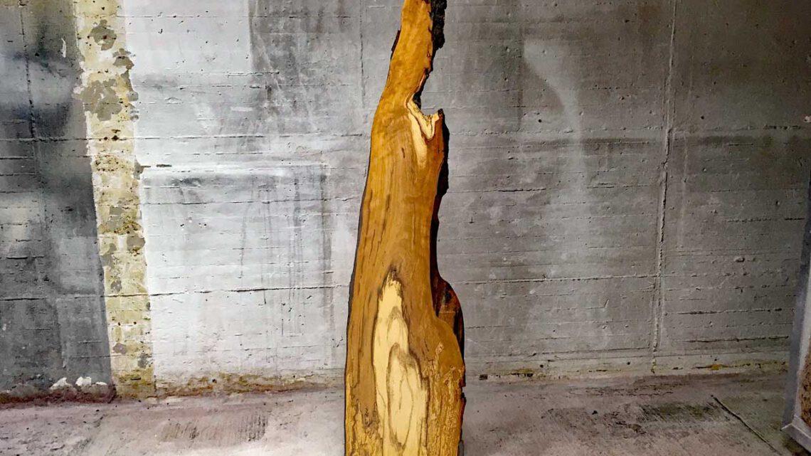 Holzskulptur Trüffelbuche
