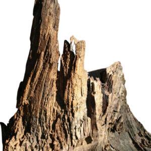 Holzkunst Mooreiche