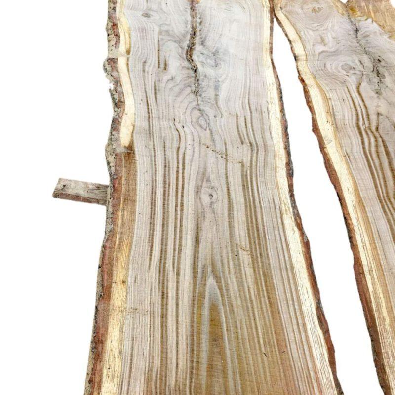Tischplattenrohling Eiche Stamm 6