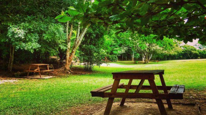 Picknickplatz im Wald