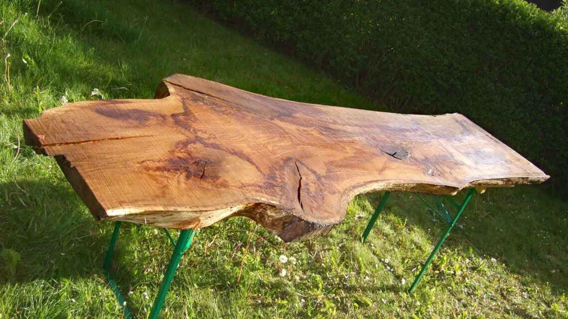 Eichenholz für den Garten Baumscheibe