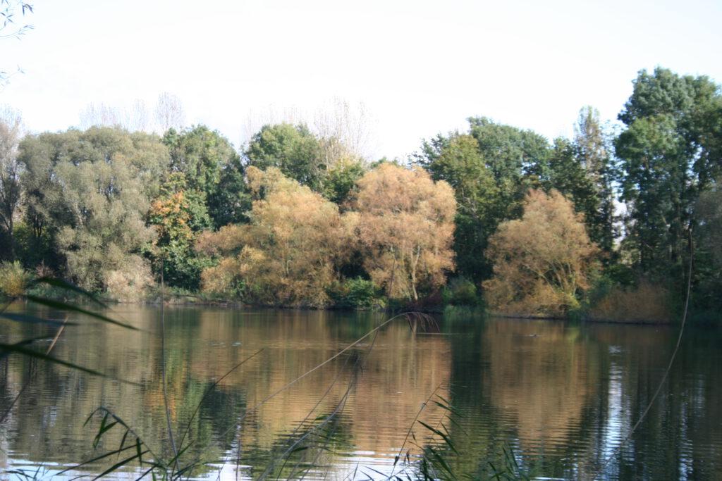 Südsee Braunschweig